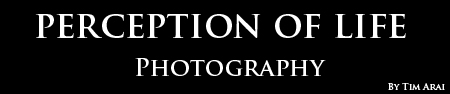 Perception of Life Photography Blog logo